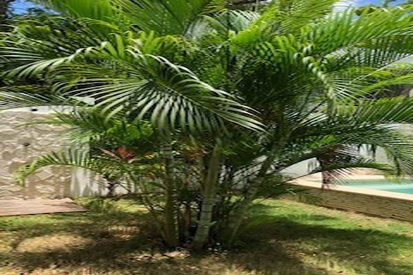 Foto de casa en venta en  , villas tulum, tulum, quintana roo, 14020374 No. 18