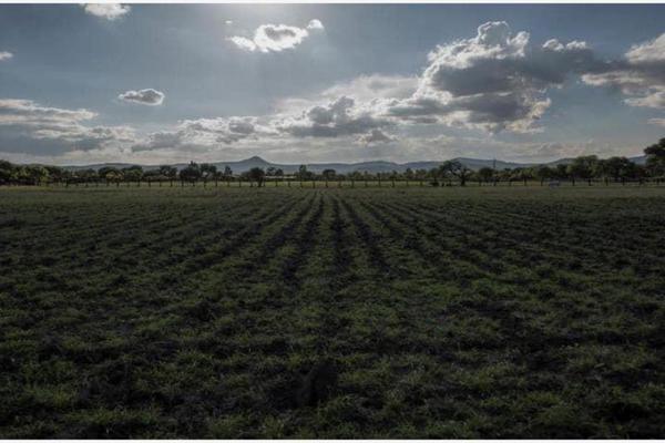 Foto de rancho en venta en villela 0, villela, santa maría del río, san luis potosí, 20112230 No. 14
