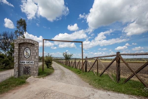 Foto de terreno habitacional en venta en viñedos san lucas , san lucas, san miguel de allende, guanajuato, 7171705 No. 01