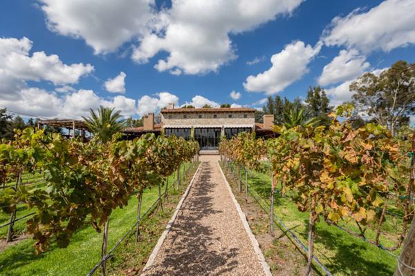 Foto de terreno habitacional en venta en viñedos san lucas , san lucas, san miguel de allende, guanajuato, 7171705 No. 04