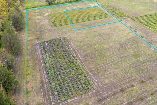 Foto de terreno habitacional en venta en viñedos san lucas , san lucas, san miguel de allende, guanajuato, 7171705 No. 06