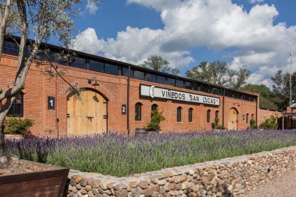 Foto de terreno habitacional en venta en viñedos san lucas , san lucas, san miguel de allende, guanajuato, 7171705 No. 10