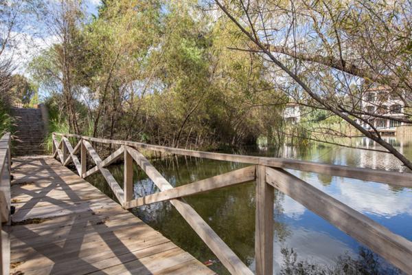 Foto de terreno habitacional en venta en viñedos san lucas , san lucas, san miguel de allende, guanajuato, 7171705 No. 11