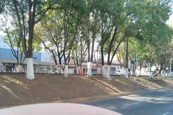 Foto de local en renta en virrey de almanza , la luneta, zamora, michoacán de ocampo, 20326594 No. 08