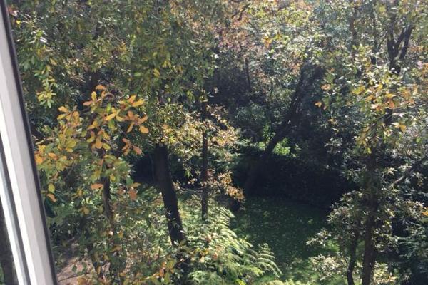 Foto de departamento en renta en vista hermosa , lomas de vista hermosa, cuajimalpa de morelos, distrito federal, 4664689 No. 13