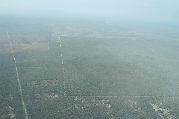 Foto de terreno comercial en venta en  , vista hermosa, soto la marina, tamaulipas, 2632247 No. 06