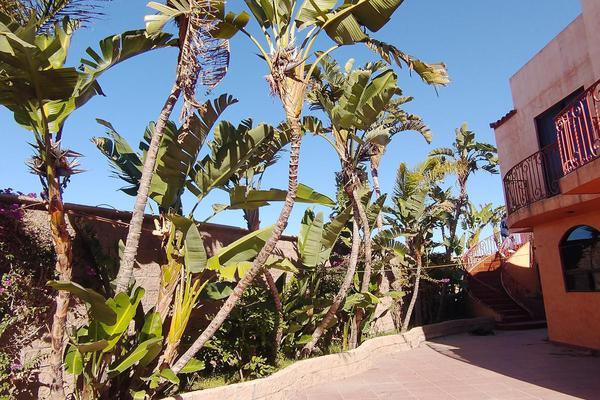 Foto de casa en venta en  , vista hermosa, tijuana, baja california, 19361009 No. 10