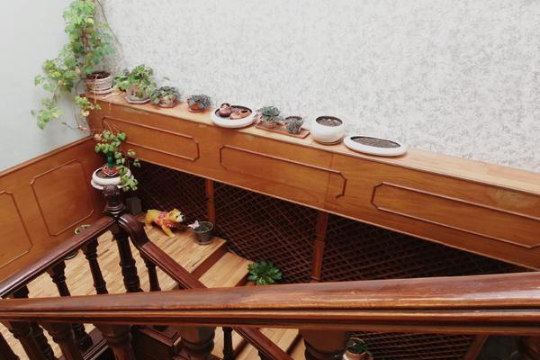 Foto de local en venta en viveros de coyoacán , viveros de la loma, tlalnepantla de baz, méxico, 0 No. 04