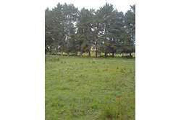 Foto de terreno habitacional en venta en xalatlaco , tenango de arista, tenango del valle, méxico, 10024982 No. 05