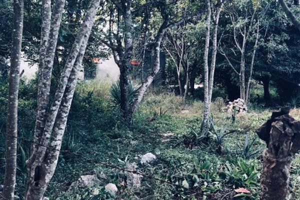 Foto de terreno habitacional en venta en  , xcunyá, mérida, yucatán, 13481583 No. 04