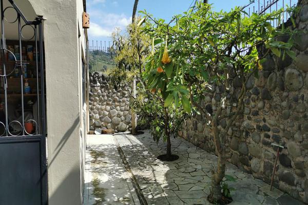 Foto de casa en venta en  , xico, xico, veracruz de ignacio de la llave, 19714633 No. 04