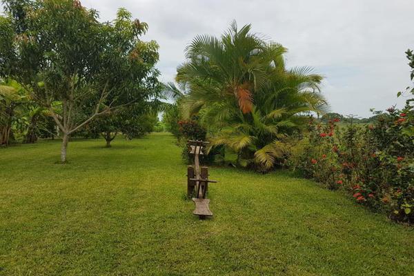 Foto de terreno habitacional en venta en xxx xxx, medellin de bravo, medellín, veracruz de ignacio de la llave, 5946982 No. 08