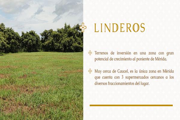 Foto de terreno habitacional en venta en  , yaxche, mérida, yucatán, 8106113 No. 03