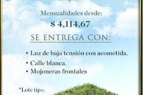 Foto de terreno habitacional en venta en  , yaxkukul, yaxkukul, yucatán, 8100205 No. 03