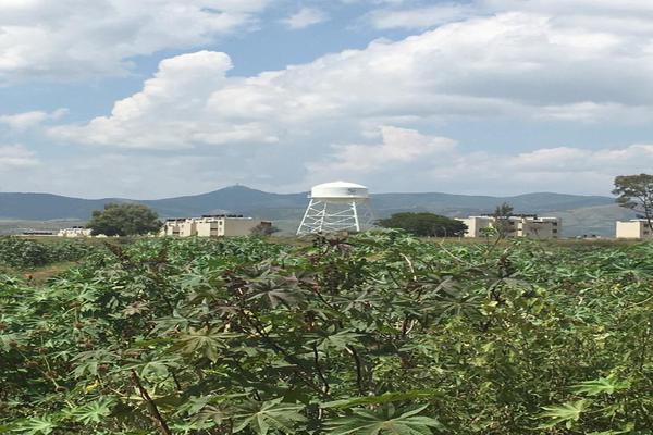 Foto de terreno habitacional en venta en  , yerbabuena, guanajuato, guanajuato, 16896630 No. 06
