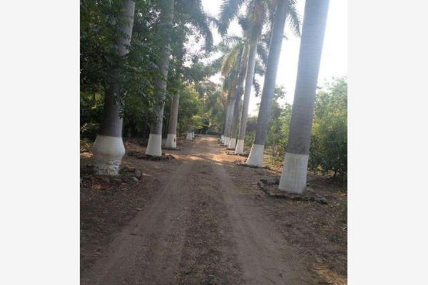 Foto de terreno habitacional en venta en  , zacualpan de amilpas, zacualpan, morelos, 17673727 No. 01