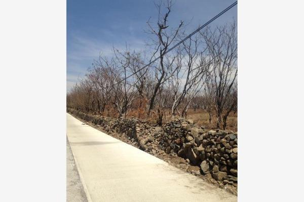 Foto de terreno habitacional en venta en  , zacualpan de amilpas, zacualpan, morelos, 5334611 No. 02
