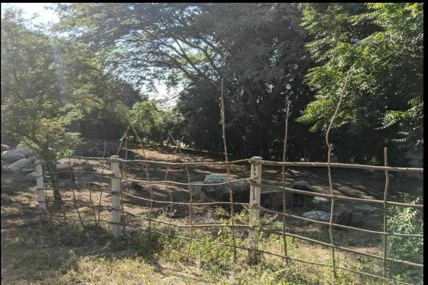 Foto de terreno habitacional en venta en  , zicatela, santa maría colotepec, oaxaca, 0 No. 05