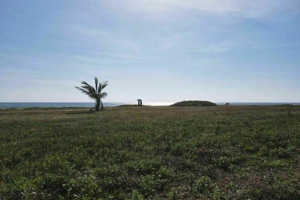 Foto de terreno habitacional en venta en  , zicatela, santa maría colotepec, oaxaca, 0 No. 13