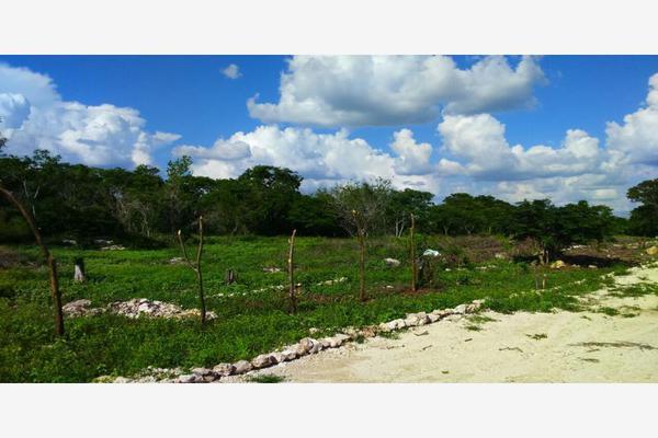 Foto de terreno habitacional en venta en zona arqueologica , izamal, izamal, yucatán, 0 No. 06