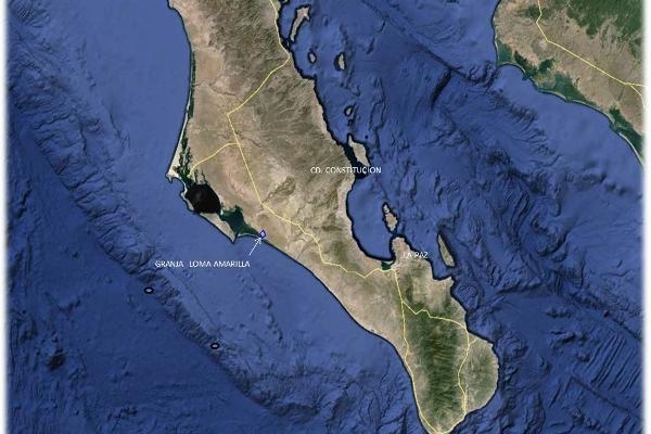 Foto de terreno comercial en venta en  , zona industrial, la paz, baja california sur, 2266090 No. 02