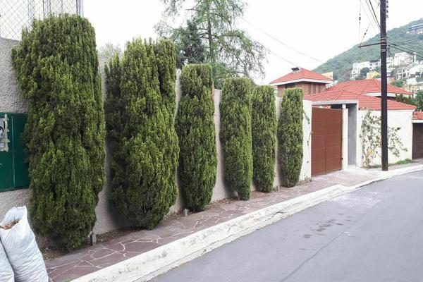 Foto de casa en renta en  , zona pedregal del valle, san pedro garza garcía, nuevo león, 20291608 No. 02