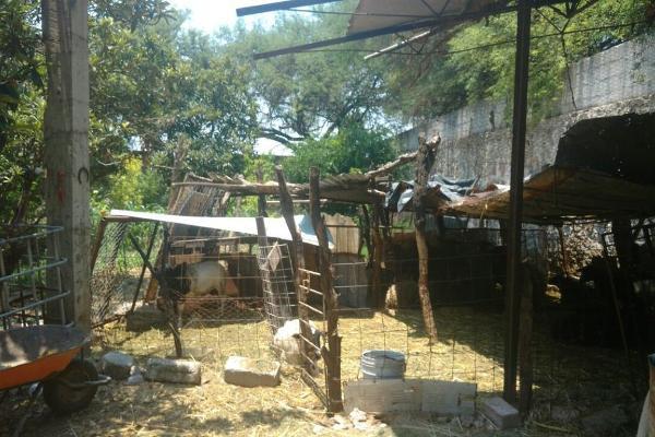 Foto de rancho en venta en  , zona sur tequisquiapan, tequisquiapan, querétaro, 14033779 No. 16