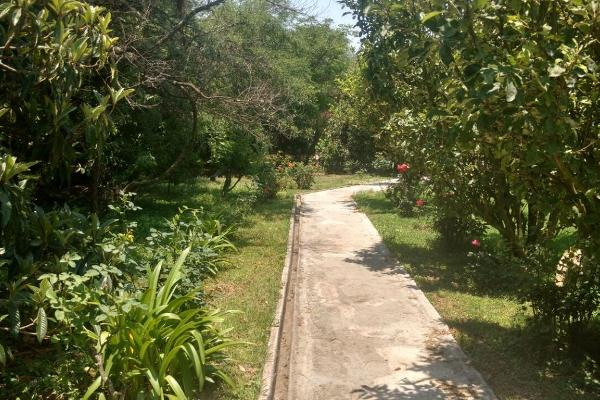 Foto de rancho en venta en  , zona sur tequisquiapan, tequisquiapan, querétaro, 14033779 No. 33