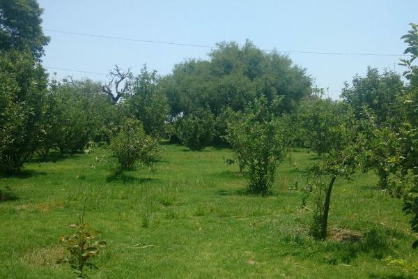 Foto de rancho en venta en  , zona sur tequisquiapan, tequisquiapan, querétaro, 14033779 No. 37