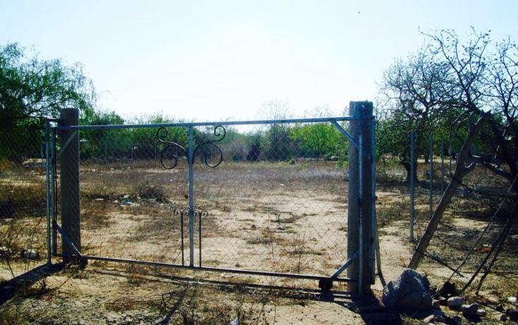 Foto de terreno habitacional en venta en  0, centenario, la paz, baja california sur, 1023599 No. 03