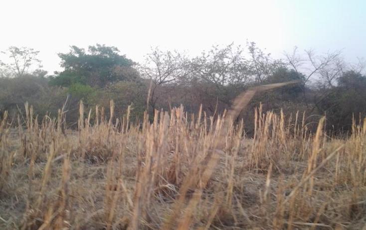 Foto de terreno comercial en venta en  0, cerro colorado, cuauhtémoc, colima, 1925970 No. 31