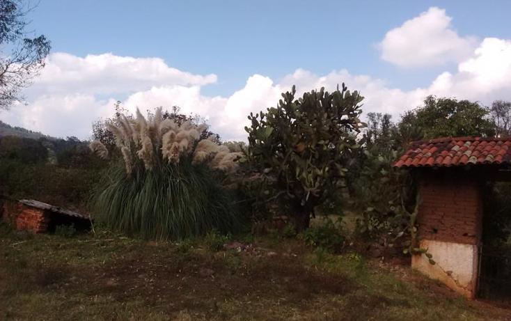 Foto de rancho en venta en  0, el manzanillal (colonia enrique ram?rez), p?tzcuaro, michoac?n de ocampo, 1765848 No. 08