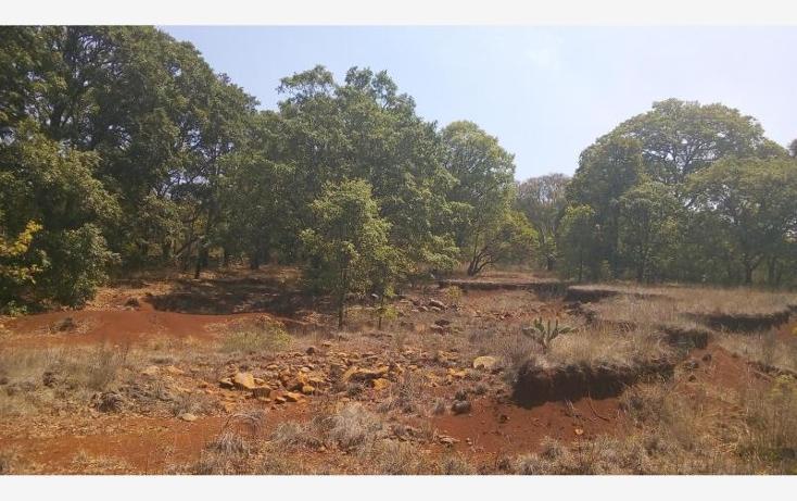 Foto de terreno habitacional en venta en  0, epitacio huerta, epitacio huerta, michoacán de ocampo, 2040050 No. 14