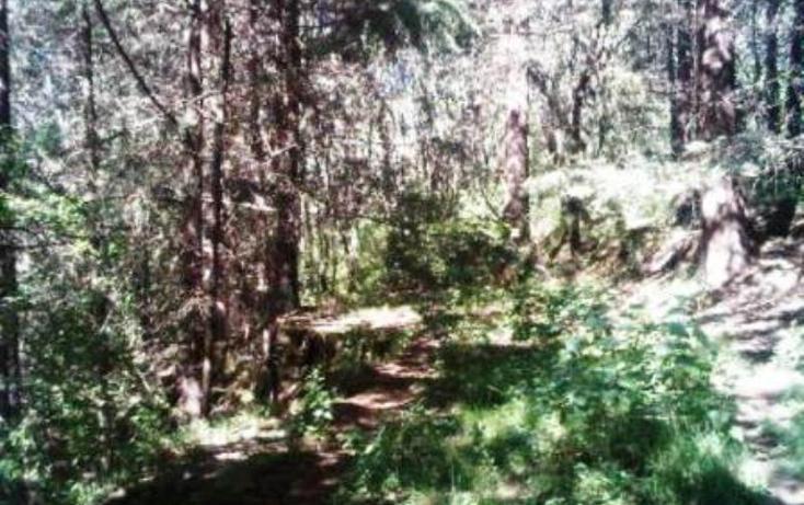 Foto de terreno habitacional en venta en  0, espíritu santo, jilotzingo, méxico, 387555 No. 03