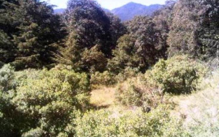 Foto de terreno habitacional en venta en  0, espíritu santo, jilotzingo, méxico, 387555 No. 06