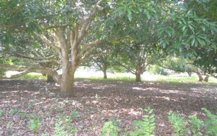 Foto de terreno comercial en venta en 98 z-1 p 1/1 0, ixcoalco, medellín, veracruz de ignacio de la llave, 1319979 No. 03