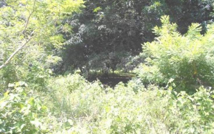 Foto de terreno comercial en venta en  0, ixcoalco, medellín, veracruz de ignacio de la llave, 1319979 No. 06