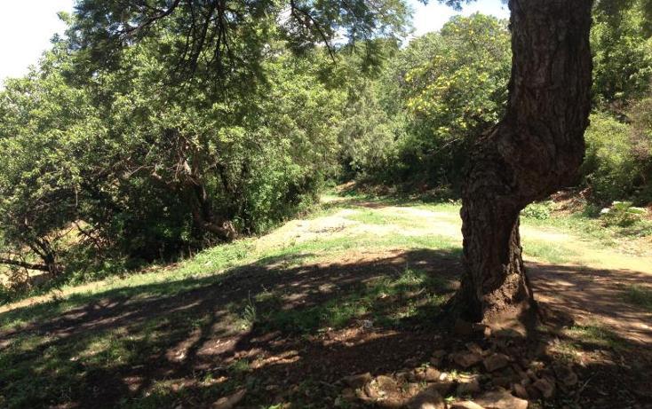Foto de terreno comercial en venta en el refugio 0, ixtapan de la sal, ixtapan de la sal, méxico, 2663471 No. 04