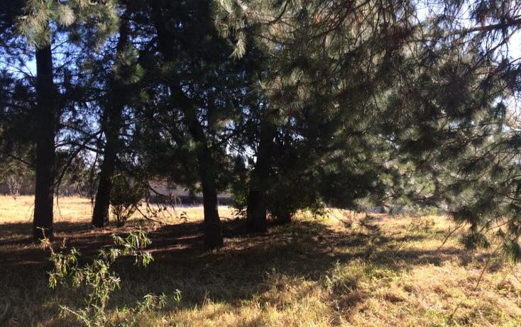 Foto de terreno habitacional en venta en  0, lázaro cárdenas, metepec, méxico, 1699552 No. 07