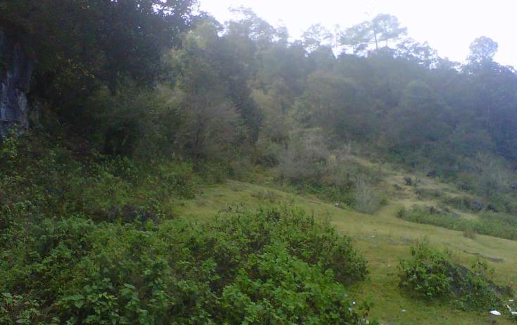 Foto de terreno habitacional en venta en  0, peje de oro, san cristóbal de las casas, chiapas, 375375 No. 01
