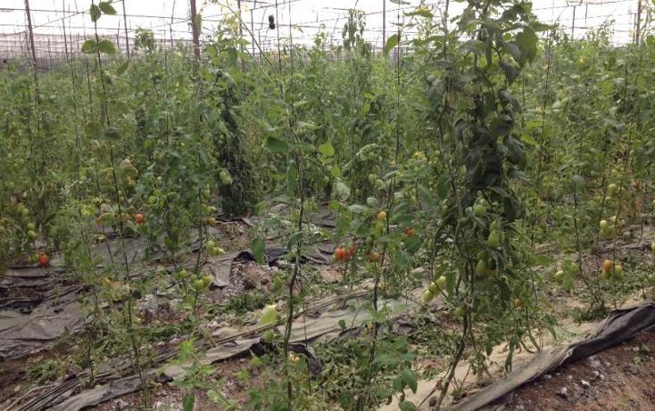Foto de rancho en venta en pilcaya 0, pilcaya, pilcaya, guerrero, 2693114 No. 07