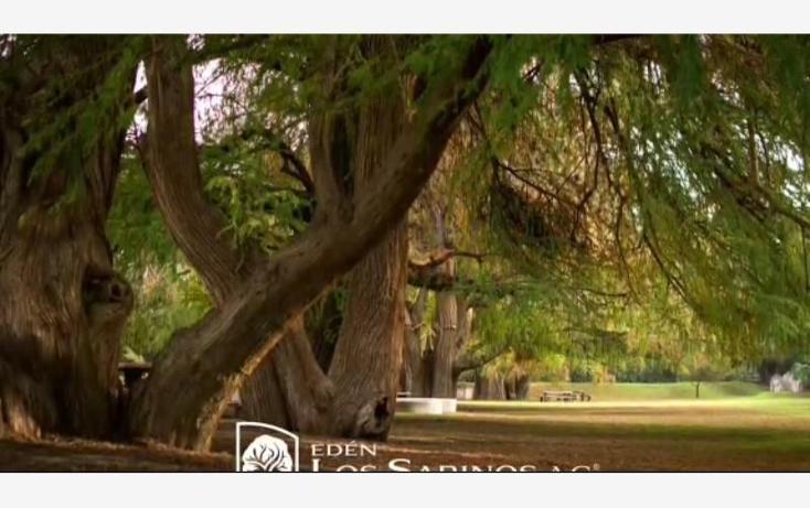 Foto de terreno habitacional en venta en  0, salto de los salados, aguascalientes, aguascalientes, 1987880 No. 16