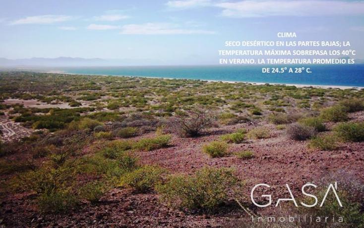 Foto de terreno comercial en venta en  0, san bruno, mulegé, baja california sur, 1308875 No. 01