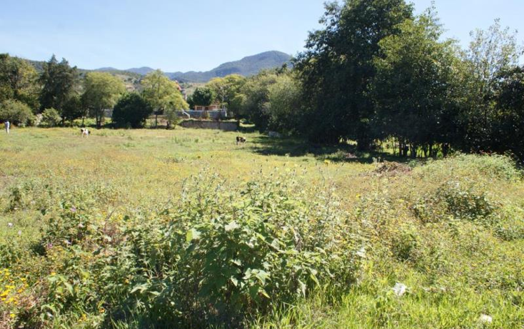 Foto de terreno habitacional en venta en  0, san gabriel etla, san juan bautista guelache, oaxaca, 894669 No. 06
