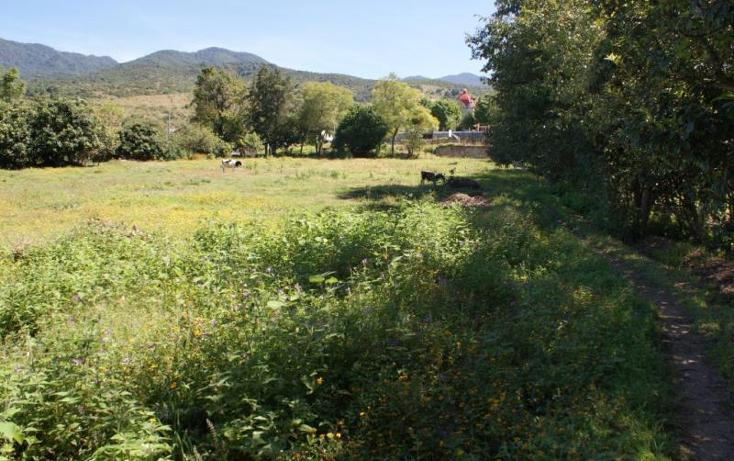Foto de terreno habitacional en venta en  0, san gabriel etla, san juan bautista guelache, oaxaca, 894669 No. 12
