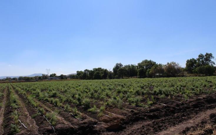 Foto de terreno comercial en venta en  0, san gil, san juan del río, querétaro, 1995430 No. 19