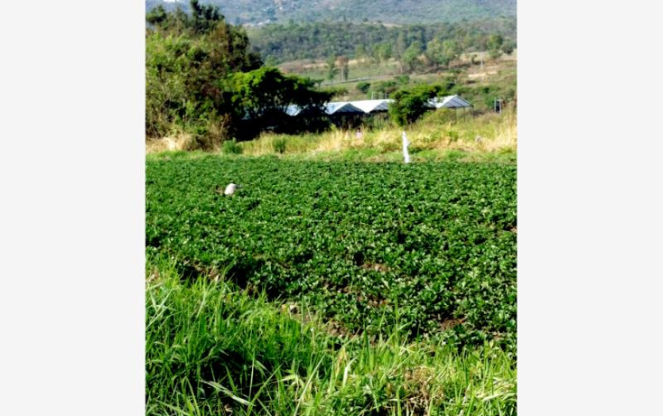 Foto de terreno comercial en venta en  0, santa ana xochuca, ixtapan de la sal, m?xico, 790371 No. 02