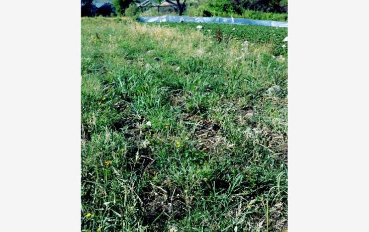 Foto de terreno comercial en venta en  0, santa ana xochuca, ixtapan de la sal, m?xico, 790371 No. 03