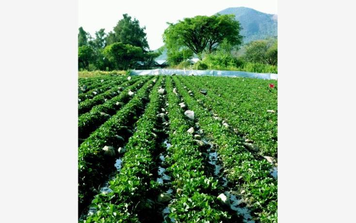 Foto de terreno comercial en venta en  0, santa ana xochuca, ixtapan de la sal, m?xico, 790371 No. 04