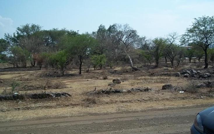 Foto de terreno habitacional en venta en  0, tepeojuma, tepeojuma, puebla, 1788278 No. 02